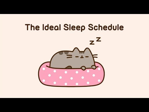 Pusheen: The Ideal Sleep Schedule