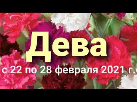 Дева Таро-гороскоп с 22 по 28 февраля 2021 г.
