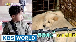 "Seungjae says ""I want to live with a puppy instead of daddy!"" [The Return of Superman / 2017.04.30]"