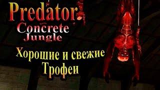 Прохождение Хищник Бетонные Джунгли (Predator Concrete Jungle) - часть 3 - Хорошие и свежие Трофеи