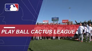 Wives of Cubs Players Host Play Ball Cactus League