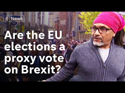 Will Euro elections be a proxy vote on Brexit?