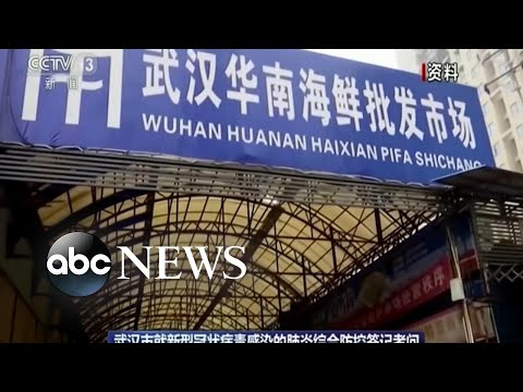 Chinese city of 11 million on lockdown amid deadly virus l ABC News