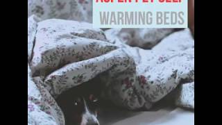 Top best heated dog beds