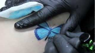 Butterfly Tattoo Dedicated to Kate Lopez - Living Art Gallery Tattoo Lounge - Monte Livingston
