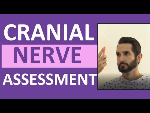 Cranial Nerve Examination Nursing | Cranial Nerve Assessment I-XII (1-12)