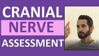 Cranial Nerve Examination Nursing   Cranial Nerve Assessment I-XII (1-12)