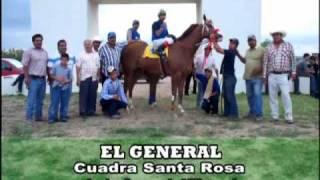 EL ZAINO DE DONA TEXAS ///EL GENERAL VS EL CAMINANTE VS EL ALEGRE