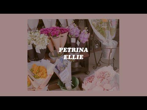 「ellie - petrina (lyrics)💐🌥」