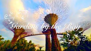 Gardens by the Bay, Singapore | ガーデンズ・バイ・ザ・ベイ thumbnail