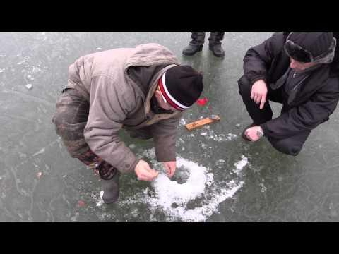 ловля щуки на жерлицы зимой - 2