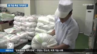 [주요 뉴스] KBS뉴스9 경남 - 쌀 가공식품 0.0…