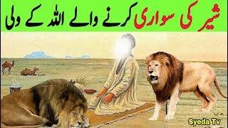 Sher KI Sawari krne Wale Allah ke Wali || Syed Sher Ali shah Ghazi || Karamat || Mazar | Lion Riding
