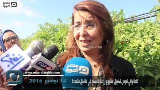 مصر العربية | غادة والي:ندرس تطبيق مشروع زراعة الأسطح في مناطق متعددة