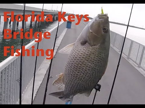Florida Keys Bridge Fishing, Marathon To Key West Bridge Fishing Episode 3
