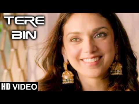 Tere Bin (Cover) - Wazir - Aparna shibu