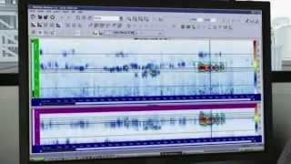 видео Визуальный контроль в электроэнергетике