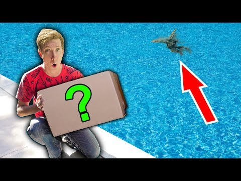 monster-in-pond-vs-ninja-gadgets-ebay-mystery-box-challenge-unboxing-haul!
