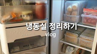 냉동실 정리 + 수납 / 냉동실 정리용기 / 남은 식재…
