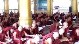 ミャンマー・バゴーの寺院で修行中の僧侶達