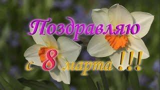 Красивое поздравление с 8 марта! Весна - праздник жизни!