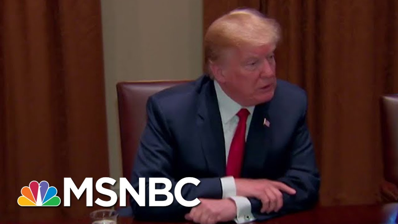 President Donald Trump: 'I'd Love To See A Shutdown' Over Immigration   MSNBC