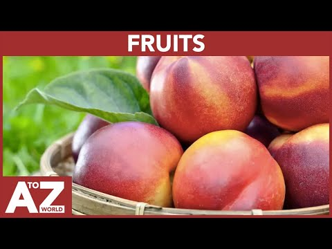 A To Z Of Fruits | ABC Of Fruits Starting From A To Z