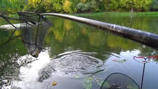 Осенняя рыбалка на реке ловля болонкой в проводку