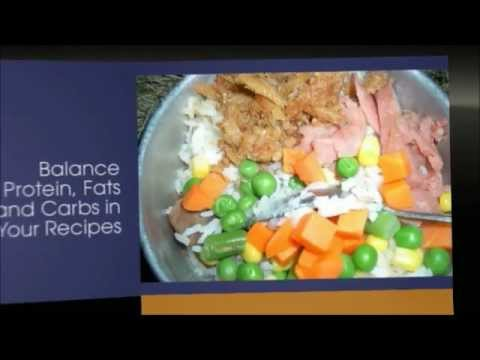 Homemade dog food recipes for small dogs homemade dog food homemade dog food recipes for small dogs homemade dog food healthy homemade dog food recipes youtube forumfinder Choice Image