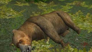 Hunting Unlimited 2010 All Animals