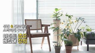 아파트 베란다정원 꾸미기, 식물선반&건조대활용으…