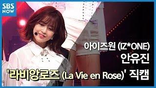 SBS  - 아이즈원 '안유진' 라비앙로즈(La Vie en Rose) 직캠 / SBS 'INKIGAYO' IZ*ONE 'An Yujin' FanCam