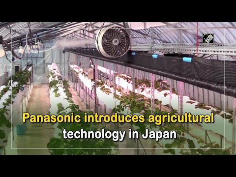 Panasonic introduces agricultural technology in Japan