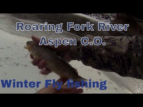 Winter Fly Fishing The Roaring Fork River ASPEN C.O. 2017