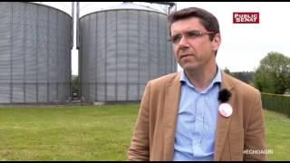 L'alimentation animale - L'écho de l'agriculture