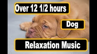 Over 12 1/2 hours of Soothing Music to Relax Your Puppy or Dog Beautiful