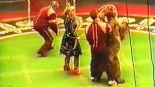 Дикая природа Нападение медведя на дрессировщиков в цирке