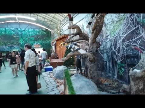Monsters aquarium pattaya in thailand