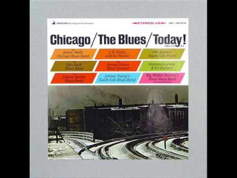 Chicago The Blues Today! (Johnny Shines)