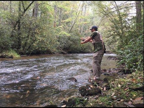 Dukes Creek GA - Trophy Trout Fishing 2017 | Georgia Outdoors