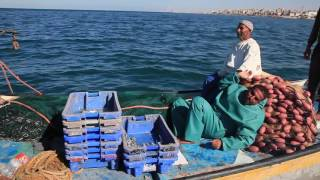 Mamdouh's Story: How the 10-Year Gaza Blockade has Devastated Fishermen
