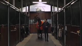 Клип конный спорт (малый повзрослел)
