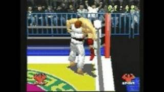 WCW vs. The World PlayStation Gameplay - WCW Vs The World