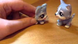 LPS Short: Where Do Babies Come From?