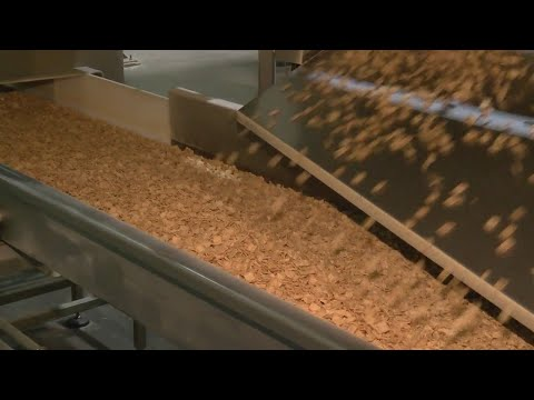 General Mills gives inside look at how Cinnamon Toast Crunch is made