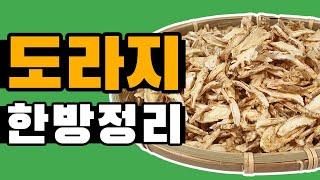 시장에 파는 도라지를 먹어도 목에 좋을까? | 도라지(…