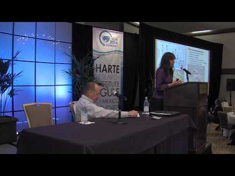 State of the Gulf of Mexico Summit: Ethanol and Hypoxia Discussion