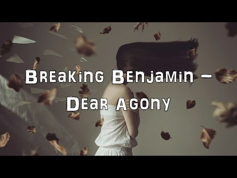 Breaking Benjamin - Dear Agony [Acoustic Cover.Lyrics.Karaoke]