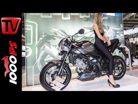 Suzuki SV650X ABS Café Racer - Suzuki Neuheiten 2018