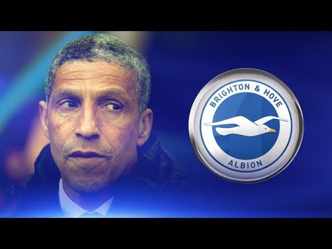 Looking at the opposition | Brighton v Newcastle United